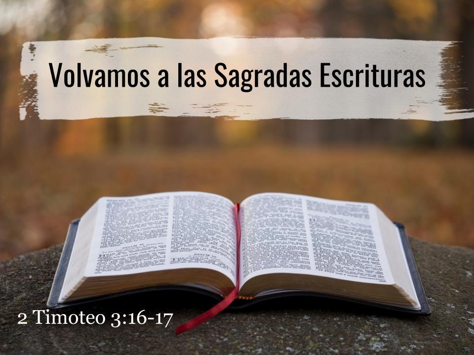 Volvamos a las Sagradas Escrituras